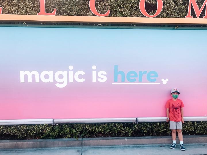 Visiting Disneyland in2021